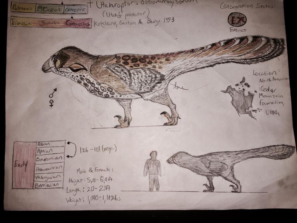A ground Hawk that would make a Polar Bear run... by CoelurosaurianArtist