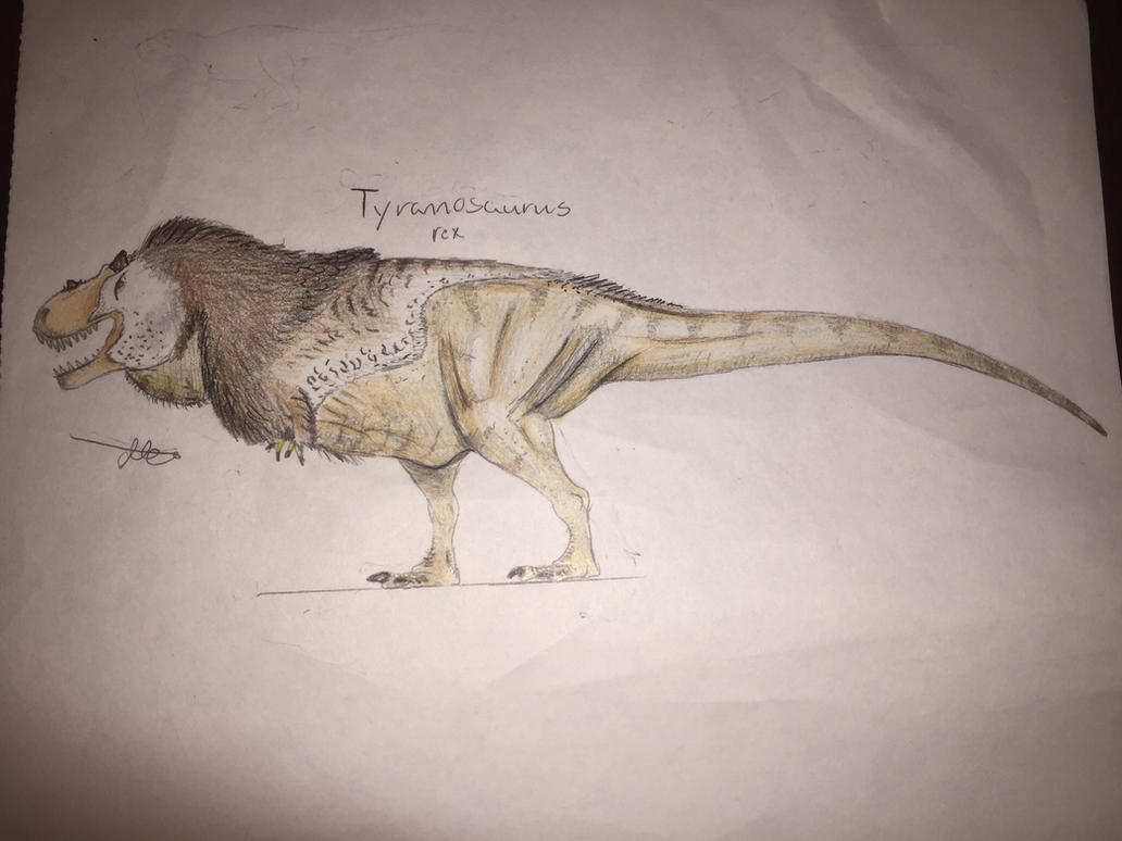 30 Days of Dinosaurs: T. rex reconstruction part 2 by CoelurosaurianArtist
