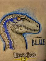 Blue the Velociraptor(yes, I said velociraptor) by CoelurosaurianArtist
