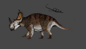 Centrosaurus apertus (2019)