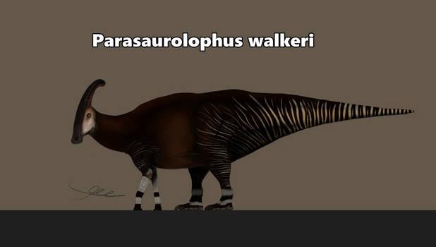 Parasaurolophus but it's an okapi