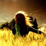 Golden Wind III by foart
