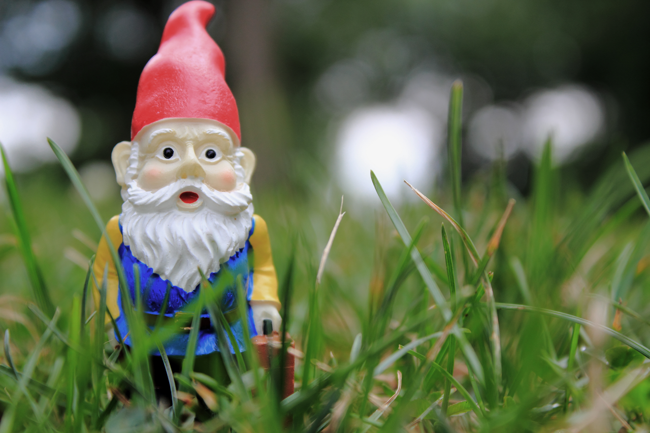 Gnome In Garden: The Saga Of Gold