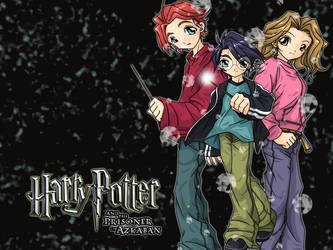 Harry Potter wallpaper by Danime-chan