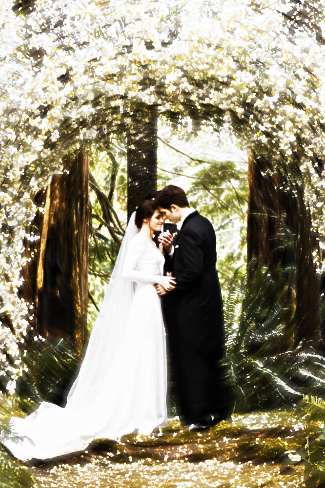 bella and edwards wedding by toriachernenko on deviantart