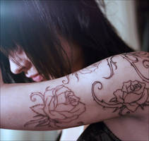 Roses by ragdolls