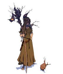 Druid by Varguy