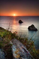 berry head sunrise