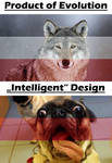 Product Of Evolution Meme