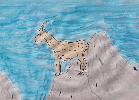 Georgi the  mountain Goat