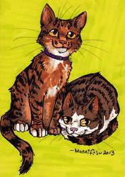 Kitties by monnifisu