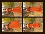 The Pumpkin Dress