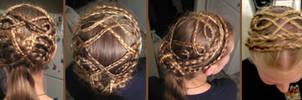 Tons of Braids Hair Design by aelthwyn