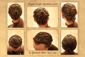 Braided Net Hairdo by aelthwyn