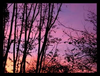 Rainbow Sky IV by aelthwyn