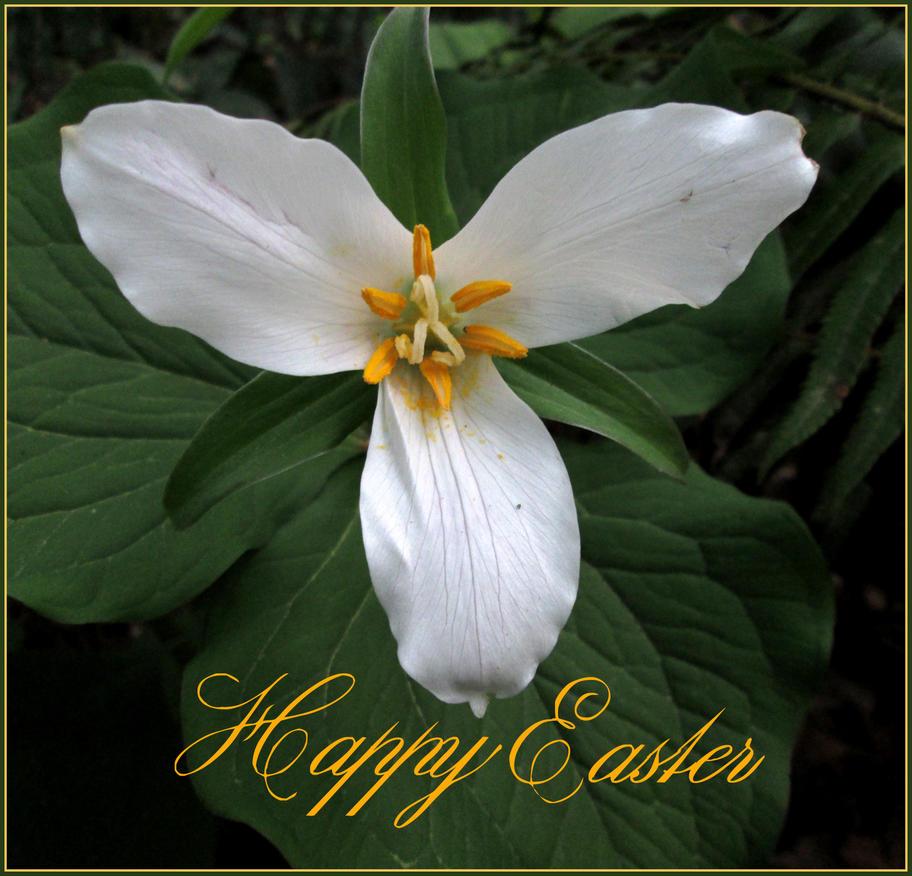 Happy Easter 2014 by aelthwyn