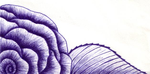 Blue Corner-Rose by aelthwyn