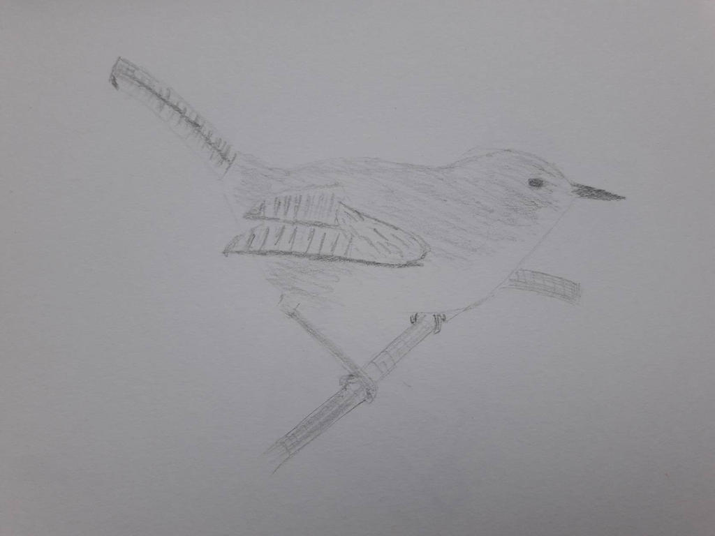 bird from reference by dgryski