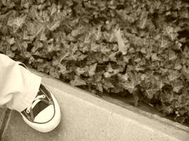 Converse-ation by IdanCarre