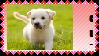 Puppeh stamp by LittleWolf10