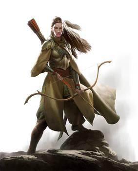 Elf Warfare Cover Art