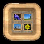 Mini room icon: Gallery