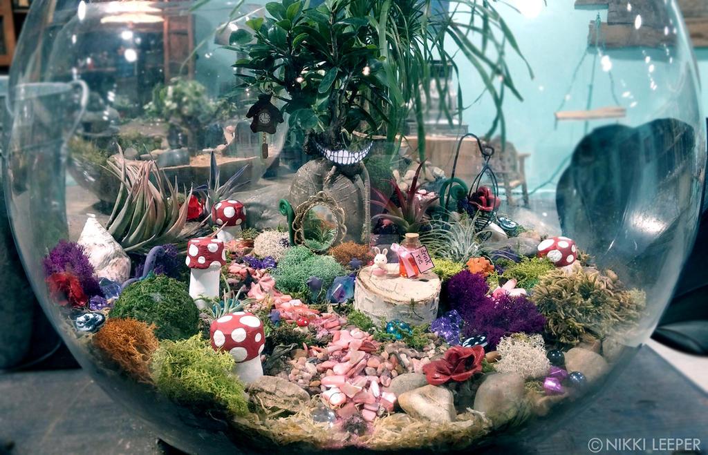 Alice in wonderland terrarium by nikkileeper on deviantart for Alice in wonderland fairy garden