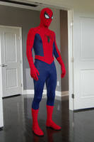 Romita Spider-Man Costume 2 by MalottPro