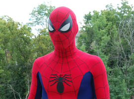 Romita Spider-Man Costume 1 by MalottPro