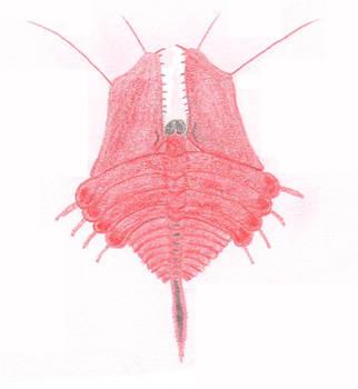 The Littermites by salpfish1