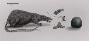 Various dream creatures