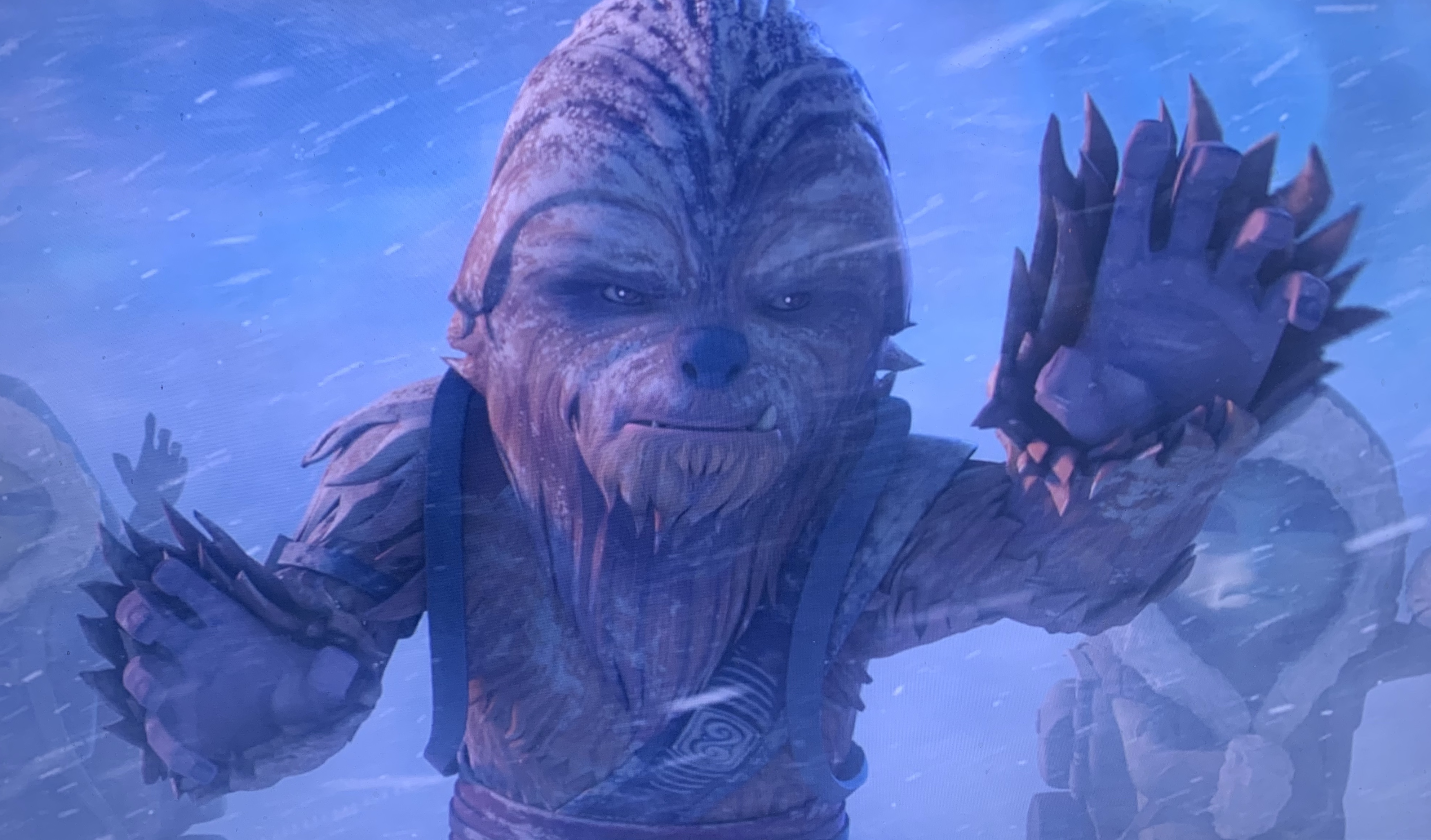 Gungi Wookiee Jedi : Gungi was a male wookiee jedi youngling who was training to become a jedi in the jedi order during the clone wars.