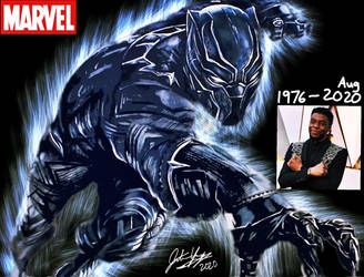 Marvel art of Black Panther Memories
