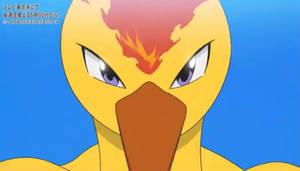 Legendary Fire Pokemon Moltres