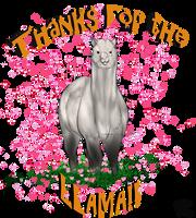 Thanks for the llama Albino by DarkoriamArt