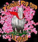 Thanks for the Super Albino Llama by DarkoriamArt