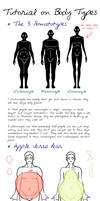 Body Types Tutorial by FrauV8