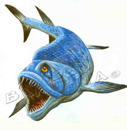 Xiphactinus by Glyptodon-graphycus on deviantART