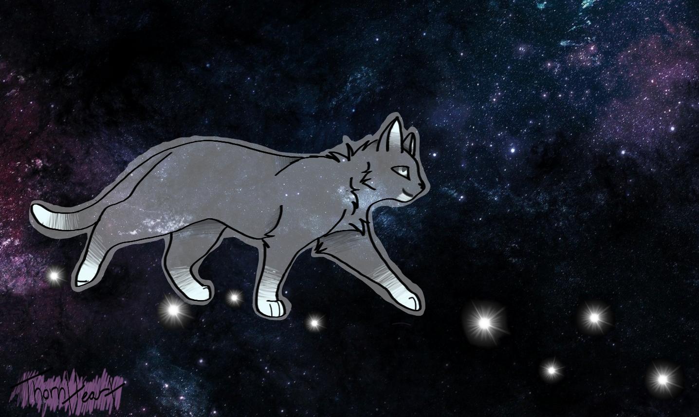 Follow the Stars by Slate-Blue