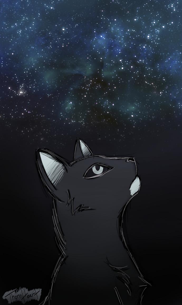 Ocean of Stars by Slate-Blue
