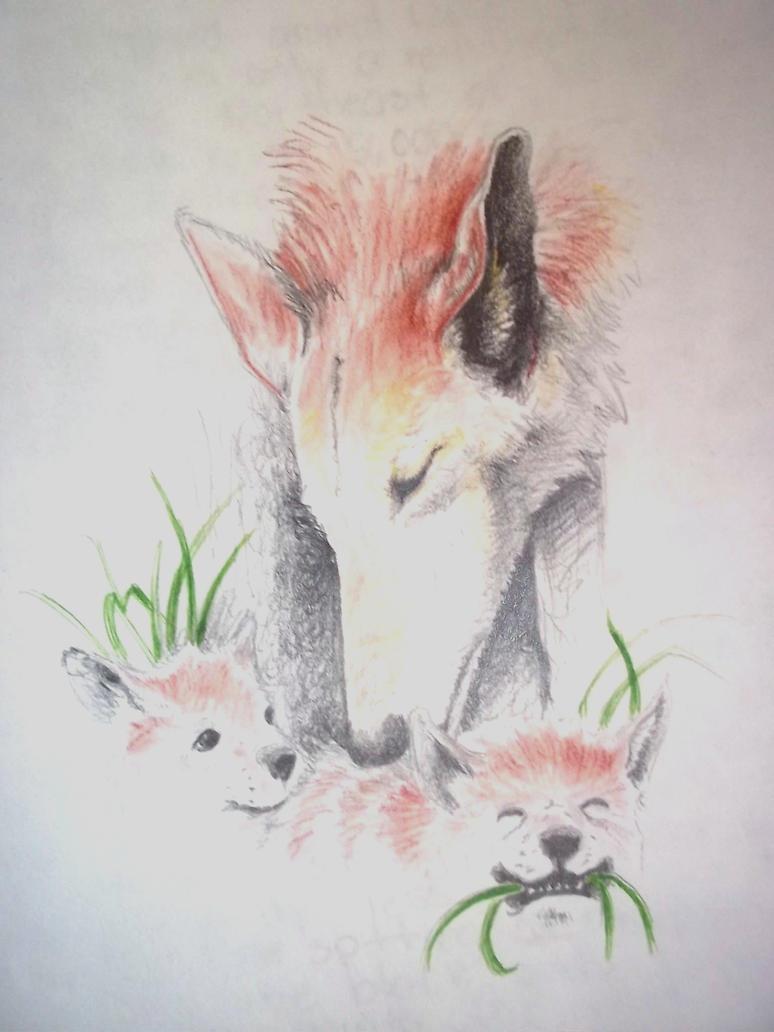 Red Wolf by Rhafiel