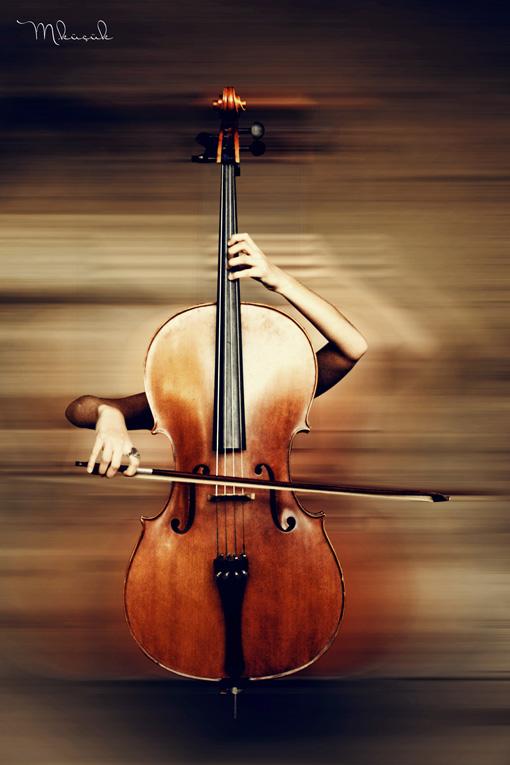 cello body by mustafakucuk on deviantart