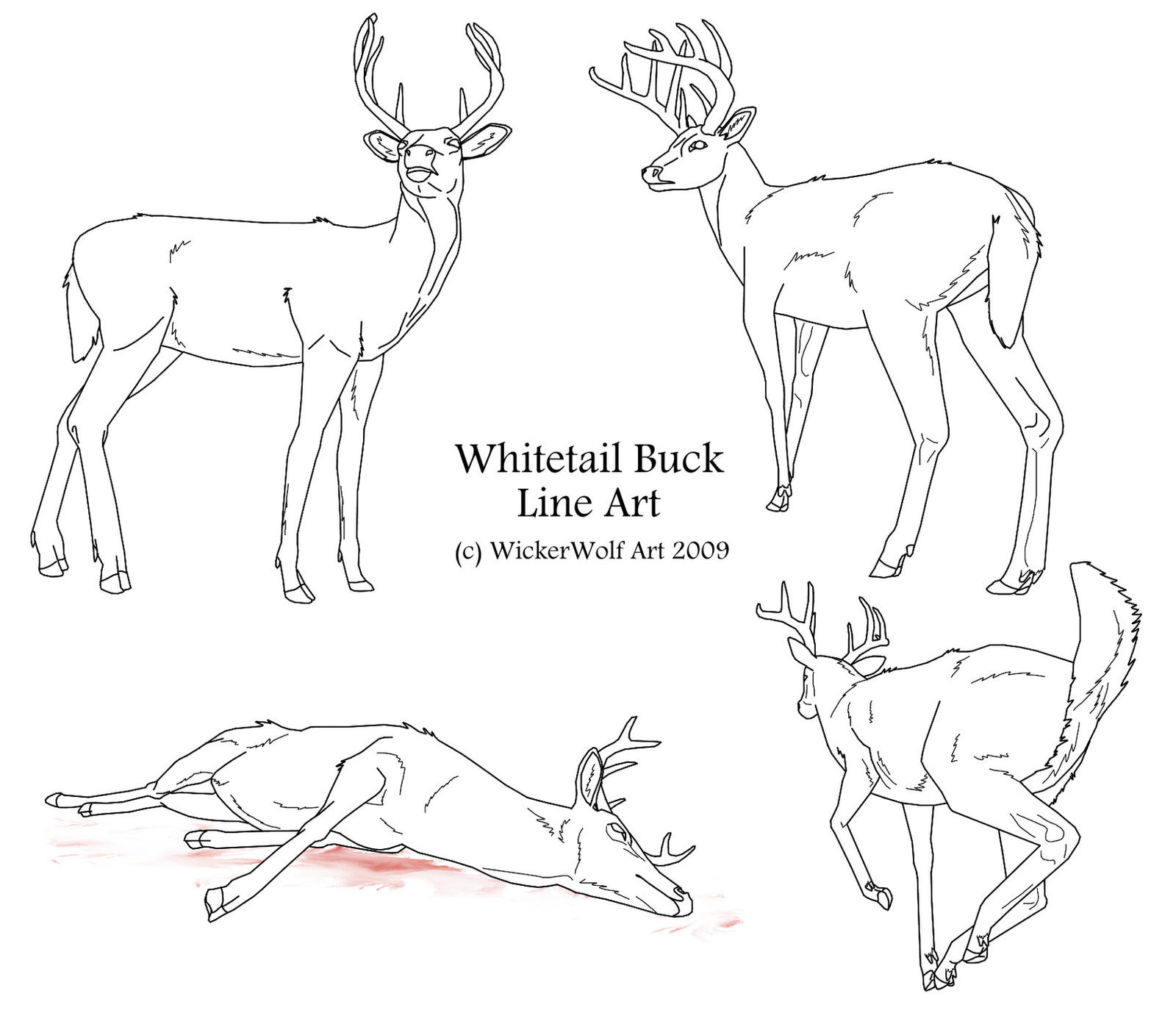 Line Art Deer : Whitetail buck line art by wickerwolfart on deviantart