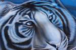 Tiger Airbrush 4