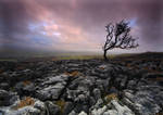 Windy on  Twistleton Scar by DL-Photography