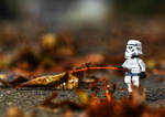 Autumn Clean Up by DL-Photography
