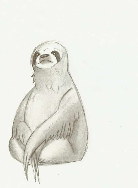sloths cartoon drawing how to draw