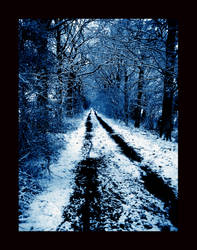 snowy path by Testhament