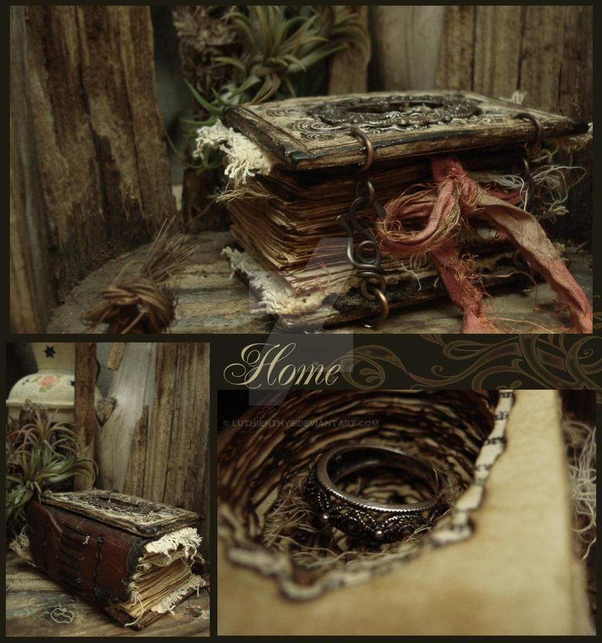 Home - Collage 1 by LuthienThye