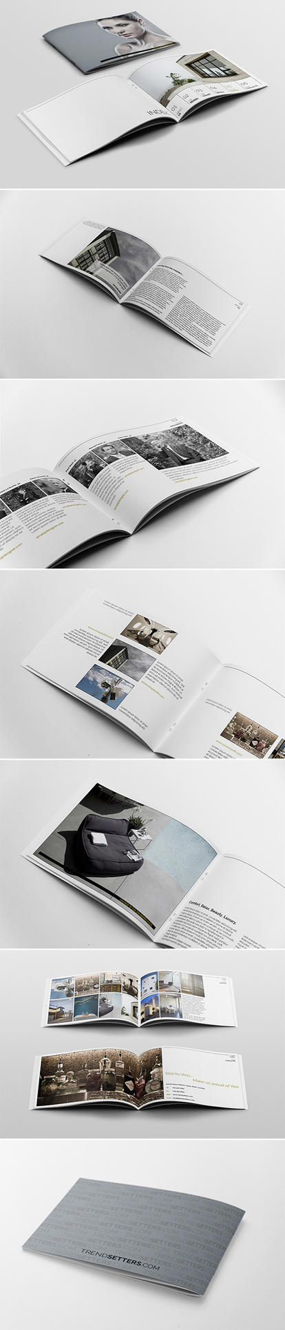 Trend Brochure Template by andre2886